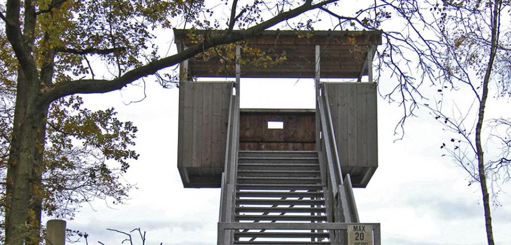 bomen, lucht, uitkijktoren