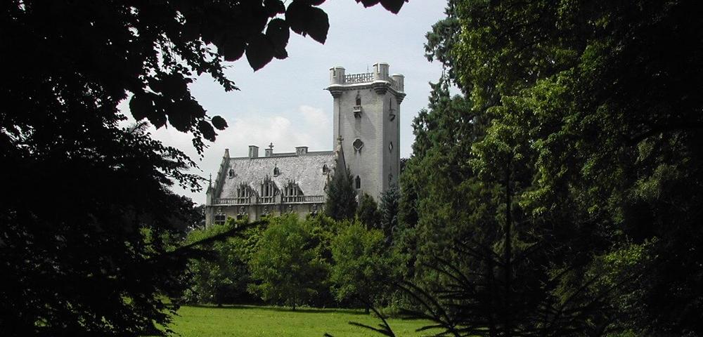 bomen, gras, kasteel