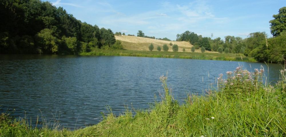 Natuurreservaat van Val-Dieu, vijver
