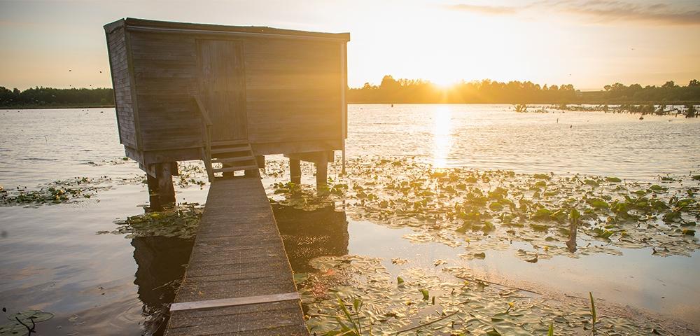 eau, lac, cabane d'observation d'oiseaux
