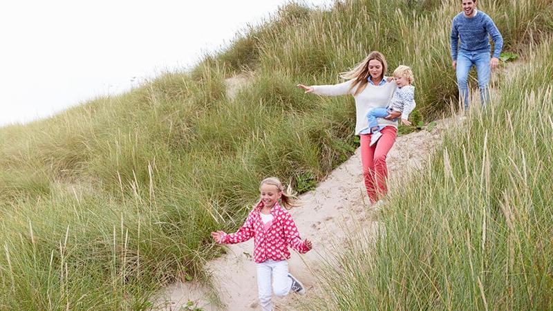 duinen, zand, gras, wandelen, wandelaars