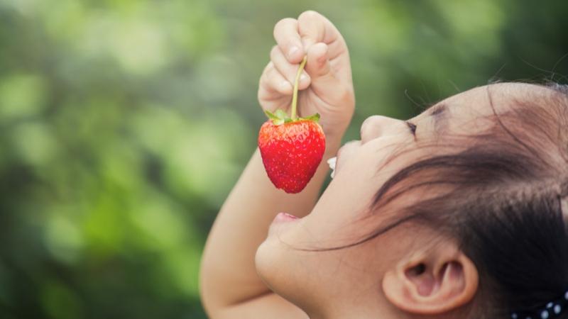 Aardbeien onthullen hun geheimen